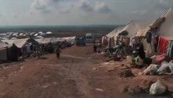 شصتمین سالگرد اجرائی شدن کنوانسیون پناهندگان