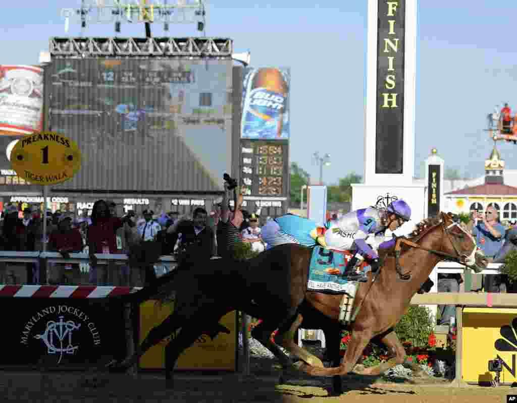 """""""I'll Have Another"""" (9), con la montda de Mario Gutiérrez, supera a """"Bodemeister"""" con el jockey Mike Smith, en la meta del 137th Preakness Stakes en el Pimlico Race Course, este sábado 19 de mayo de 2012, en Baltimore"""