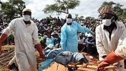 عفو بين الملل: زيمبابوه اجازه دهد در گورستان جمعی کشف شده نبش قبر انجام شود