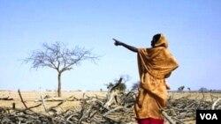 Athari za mabadiliko ya hali ya hewa barani Afrika