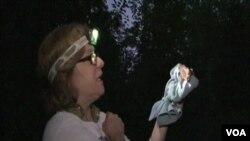 Leslie Sturges dengan seekor kelelawar yang dipantaunya.