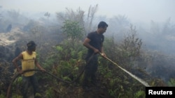 Petugas memadamkan kebakaran hutan di Bengkalis, Riau. (Foto: Dok)