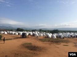 Kaambii Dambalaa Faccanaa Keenyaa jirtutti nama Mooyyalee baqate 3,348ti keessa jira--(Footoo)Galmo Dawit