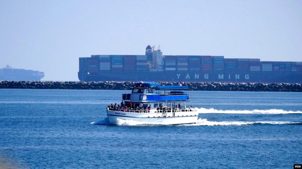 排隊的集裝箱貨輪是觀光船的新景點(美國之音國符拍攝)
