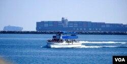 排队的集装箱货轮是观光船的新景点(美国之音国符拍摄)
