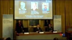 2015-10-07 美國之音視頻新聞: 美英三科學家分享諾貝爾化學獎