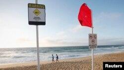 Dua orang pria berjalan di pinggir pantai Newcastle, Australia, melewati papan peringatan larangan beraktivitas di laut dan ancaman ikan hiu (Foto: dok). Seorang warga Jepang tewas, setelah seekor ikan hiu mencabik kedua kakinya, Senin (9/2), ketika berselancar di lepas pantai pantai timur Australia.