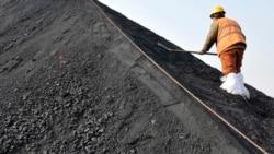 力拼碳中和 环保人士呼吁中国检讨海外煤电厂计划