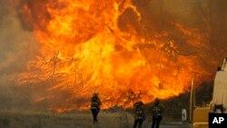 Kobaran api dalam kebakaran hutan di Ngarai Placerita di Santa Clarita, California (25/7). (AP/Nick Ut)