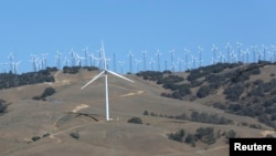 Wind turbines at a wind farm are seen generating power in Tehachapi, California, June 19, 2013..