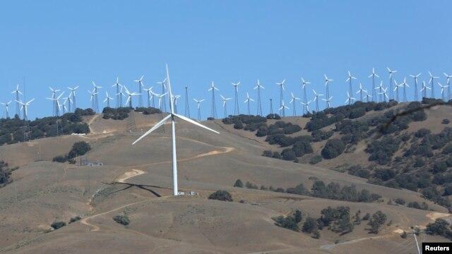 Wind turbines at a wind farm are seen generating power in Tehachapi, California, June 19, 2013..