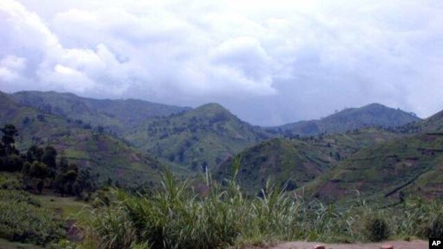 The fertile lands of Masisi in Eastern Congo contain important deposit of coltan, a metal which is needed for computer and mobile phone internal processors and which is subsequently booming on world market. One rebel group who controlled the resource-rich mountains said coltan made them 1 million dollars a month. (AP Photo/Arnaud Zajtman)