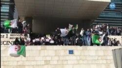 Cezayir'de Buteflika Karşıtı Gösteriler Sürüyor