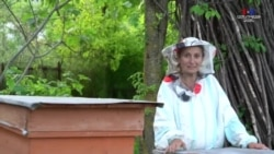 Քաղաքի աղջիկը՝ գյուղի հարս