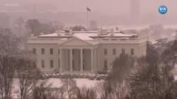 Washington Beyaza Büründü