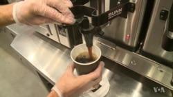 Caffeine Shapes the Brain to Make Us Buzz
