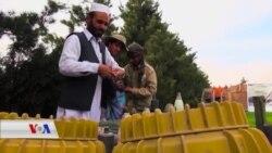Hewilên Paqijkirina Mayinan li Afganistanê