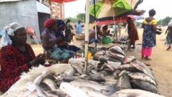 Les vendeuses de poisson préfèrent le goudron aux marchés couverts