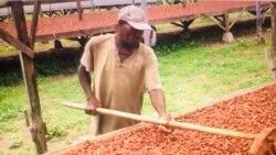 São Tome e Príncipe: Sindicatos acusam Governo de não negociar proposta de aumento salarial