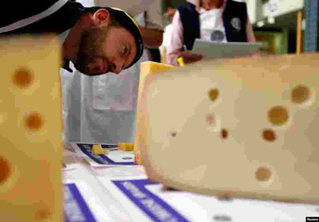 A judge inspects a piece of Emmental cheese during the Swiss Cheese Awards competition in Le Sentier, Switzerland. One hundred and forty-two experts have to choose the best out of 777 cheeses from 353 producers competing in 28 categories.