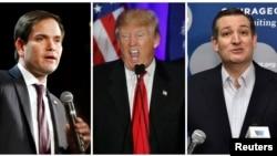 미 공화당 대선 경선에서 선두를 달리고 있는 후보들. 왼쪽부터 마르코 루비오, 도널드 트럼프 후보, 테드 크루즈 후보. (자료사진)