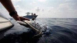 تلاش برای جلوگیری از نابودی دریاچه آرال