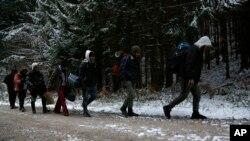Grupa migranata se kreće kroz šumu na planini Plješevica u pokušaju ilegalnog prelaska granice u Hrvatsku, Bihać, novembar 2018.