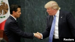 U.S. Republican presidential nominee Donald Trump and Mexico's President Enrique Pena Nieto shake hands at a press conference at the Los Pinos residence in Mexico City, Mexico, Aug. 31, 2016.