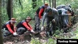 지난 6월 호국보훈의 달을 맞아 한국 육군 제32사단 장병들이 충청남도 전동면 청남리 운주산 인근 개미고개에서 한국전쟁 전사자 유해발굴 작업을 진행하고 있다. (자료사진)