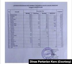 Data kerusakan tanaman di Kabupaten Karo akibat erupsi Gunung Sinabung. (Foto: Dinas Pertanian Karo)