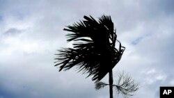 多里安飓风袭击巴哈马 (美联社照片)
