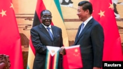 Zimbabwe's President Robert Mugabe (L) and his Chinese counterpart Xi Jinping shake hands during a signing ceremony at the Great Hall of the People in Beijing, Aug. 25, 2014.