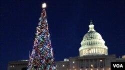 미 의회 성탄트리 점등식