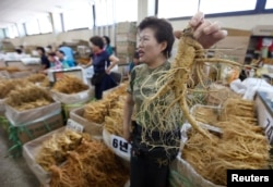 FILE - A ginseng dealer holds a 6-year-old root at a market in Geumsan, South Korea, about 200 km (124 miles) south of Seoul, Sept. 2, 2009.