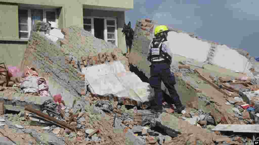 Un agent de l'USAID recherche des survivants, avec l'aide d'un chien renifleur, sur le site d'un bâtiment effondré à la suite d'un tremblement de terre à Katmandou, au Népal, mardi 12 mai 2015.