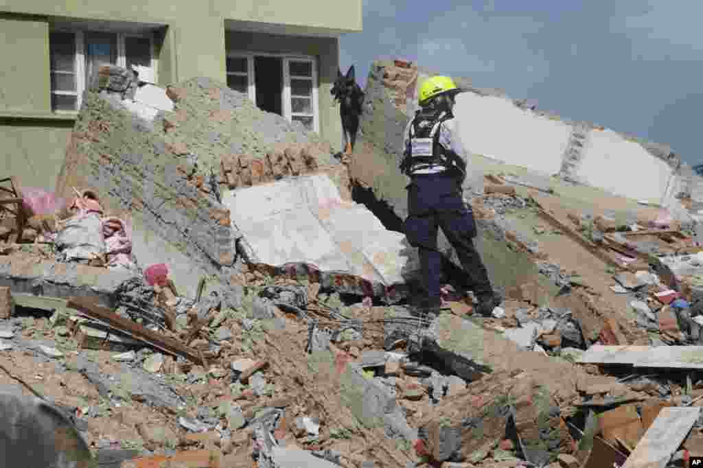 A rescue worker and a sniffer dog search for survivors at the site of a collapsed building in Kathmandu, May 12, 2015.