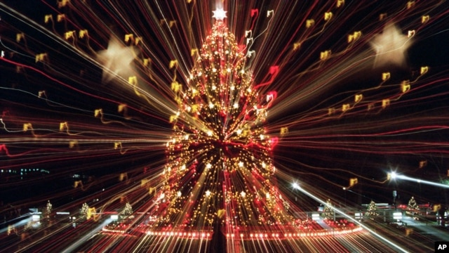 Cây Giáng sinh Quốc gia tại thủ đô Washington.