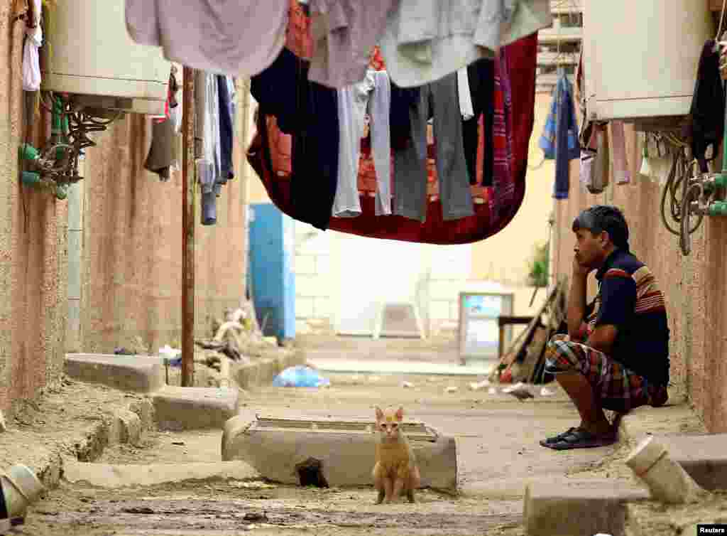 A cat is seen as an Asian worker sits at his accommodation in Qadisiya labour camp, Saudi Arabia.
