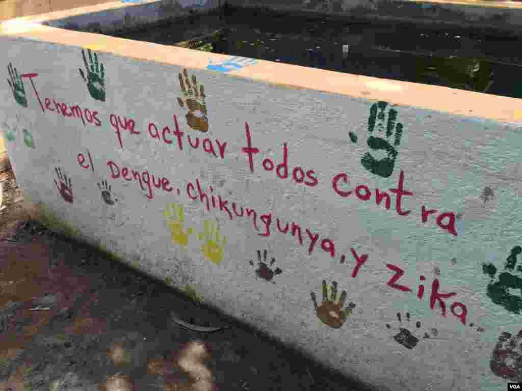 El Salvador usa tilapias para controlar o zika