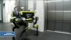 İsviçre'den 'Korkusuz' Robot