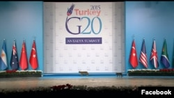 Cats take center stage at G-20 summit in Turkey