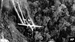 Распыление «Agent Orange» над джунглями Южного Вьетнама. Май 1966 года. Архивное фото.