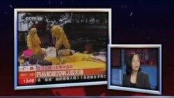 焦点对话(2)中国的水危机-问题根源
