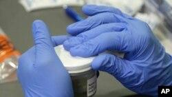 Petugas kesehatan di negara bagian Florida memproses sampel air seni untuk menguji adanya virus Zika di Miami Beach (14/9). (AP/Lynne Sladky)
