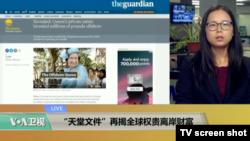 """VOA连线:""""天堂文件""""再揭全球权贵离岸财富"""