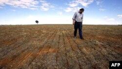 Zagadjivači nanose štetu farmerima u Australiji