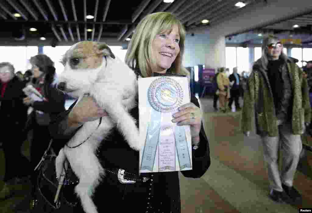 Sue Sobel menggendong Maddy, seekor terrier Russell yang menang untuk kategori anjing betina dalam lomba anjing Westminster Kennel Club ke-137 di Madison Square Garden, New York.