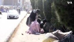 افزایش شمار معتادان در ولایت هرات