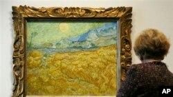 بازدیدکننده ای در حال تماشای تابلوی ون گوگ از مزرعه گندم