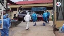 ¿Por qué hay tantos casos de coronavirus en Perú?